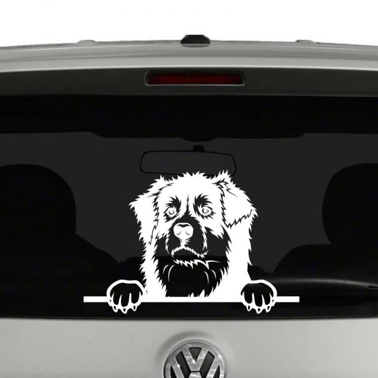 Australian Shepherd Dog Peeking Vinyl Decal Sticker