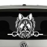 Yorkshire Terrier Dog Peeking Vinyl Decal Sticker
